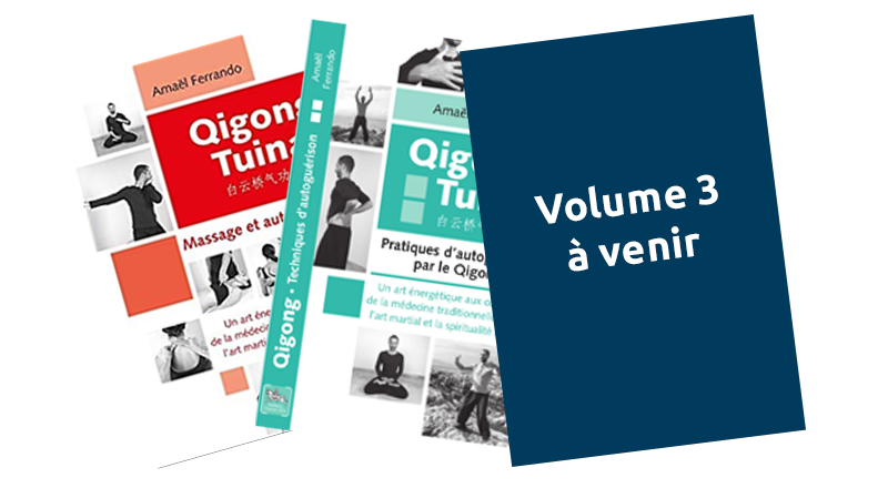 QIGONG TUINA - VOLUME 3 - PHILOSOPHIE ET DIAGNOSTIC